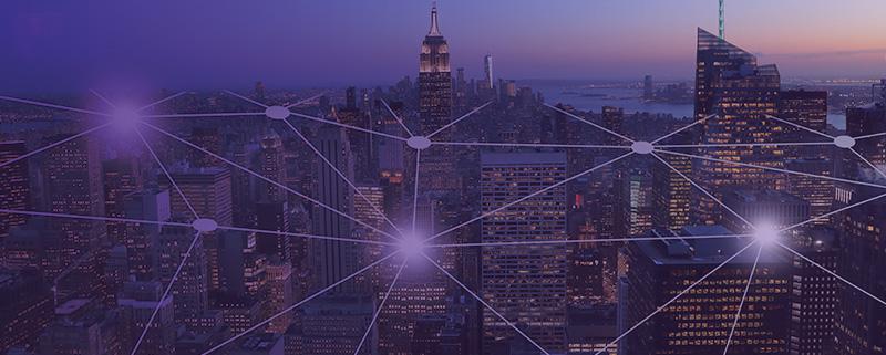 Cybersecurity & Digital Trust